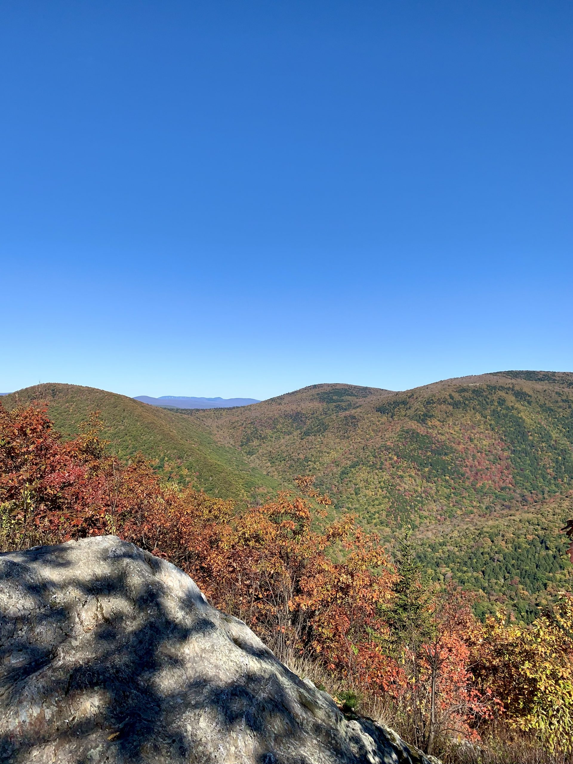 photo of a fall foliage scene with mountains and blue sky